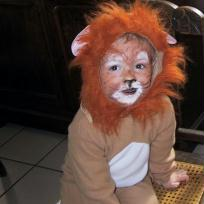 Maquillage lion