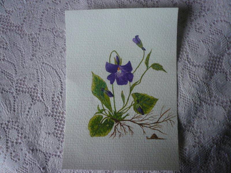 Violette et sa perle de ros e l 39 aquarelle cr ations for Peinture violette