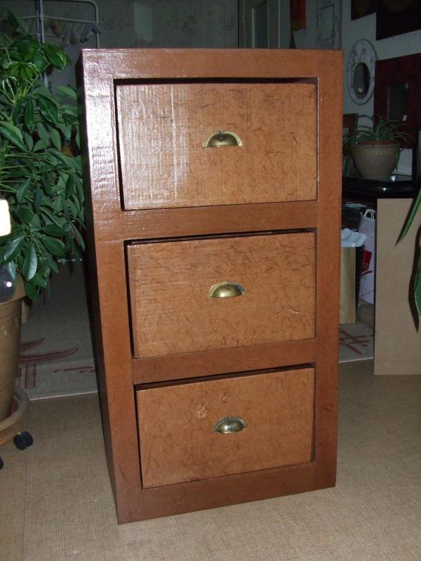 meuble carton cr ations meuble en carton de creamumu n 24081 vue 5512 fois. Black Bedroom Furniture Sets. Home Design Ideas