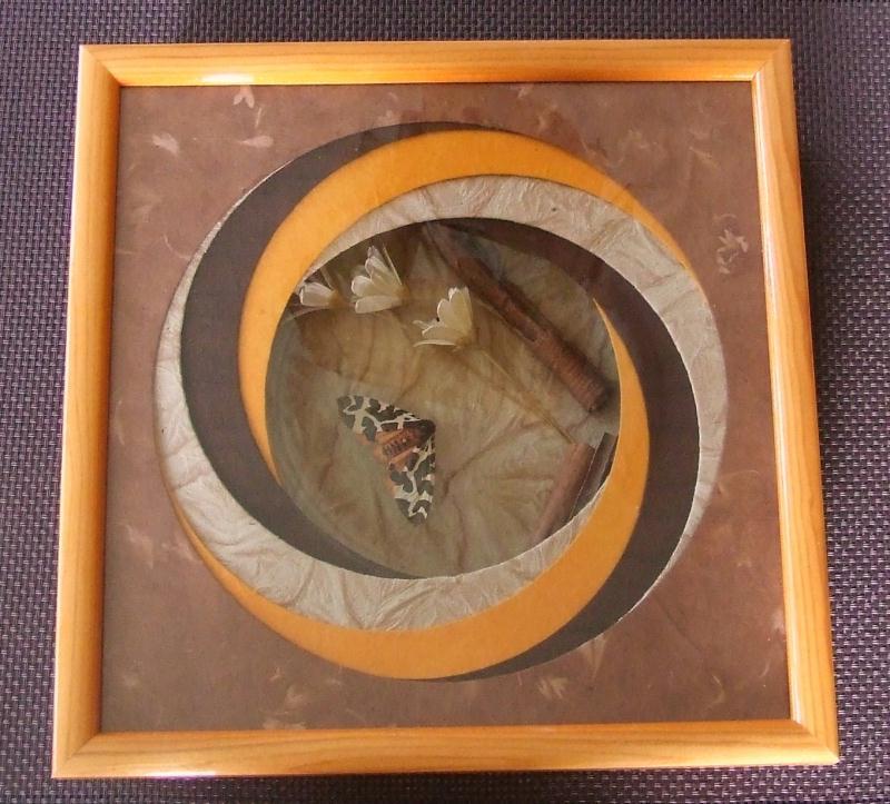 tableau en carton tourbillon de papillon cr ations encadrement de rikiki n 30325 vue 7028 fois. Black Bedroom Furniture Sets. Home Design Ideas