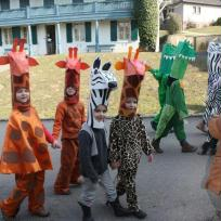 masques de girage, crocodile et zèbre