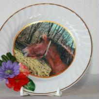 Goliath le cheval en photo sur porcelaine